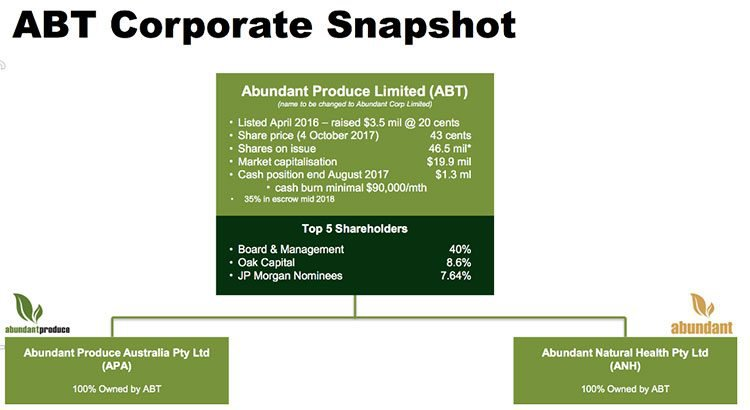 Abundant produce corporate snapshot