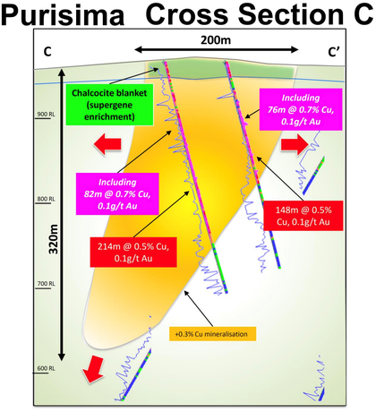 Section C displaying drilling results and an interpretation of one of the host tonalitic porphyry intrusions at Cortadera, within the Purisima Mining Right.
