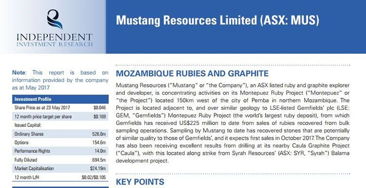 Mozambique rubies