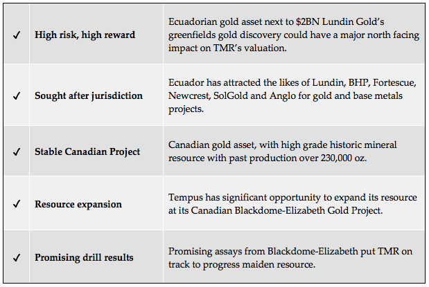 Tempus Resources - Why we have invested