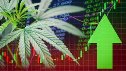 ASX Stock Currently Trading 50% Below Net Asset Value is Primed for Cannabis 2.0