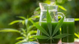 MMJ Emerging from the Storm as Cannabis 2.0 Gathers Momentum