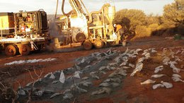 ASX Micro Cap Now Drilling for Zinc and Gold with Cobalt to Follow